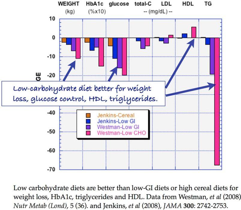 Low carb vs low fat diets